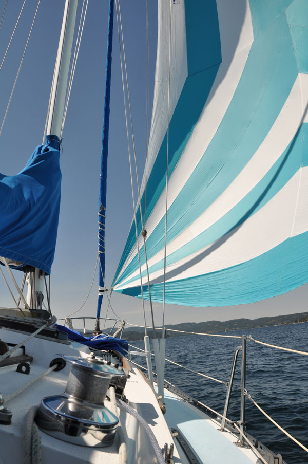 blue asymmetrical spinnaker vertical
