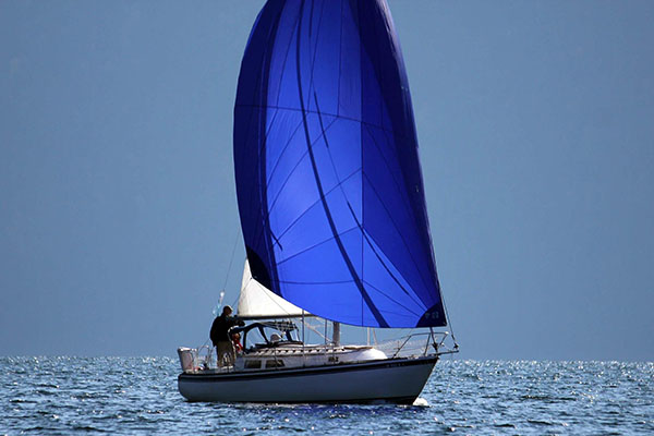 Commodores Cup Sail